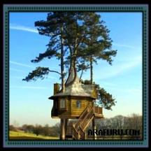Cara Membuat Rumah Pohon (Bagian. 1)