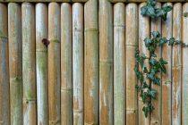 agar-pagar-bambu-awet