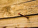 cara-menambal-kayu-berlubang