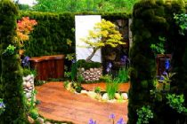 jenis-tanaman-roof-garden3