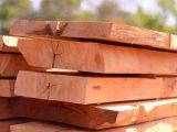 kayu-solid-dan-papan-lapis