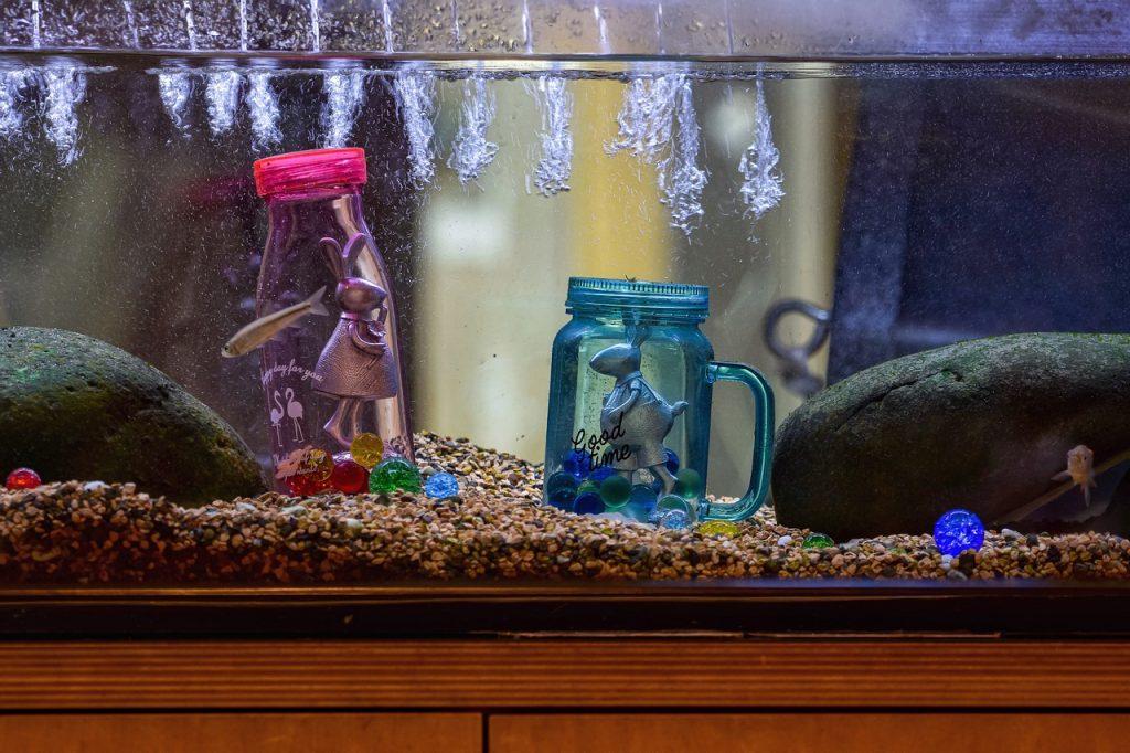 Kelebihan Dan Kekurangan Akuarium Akrilik Arafuru