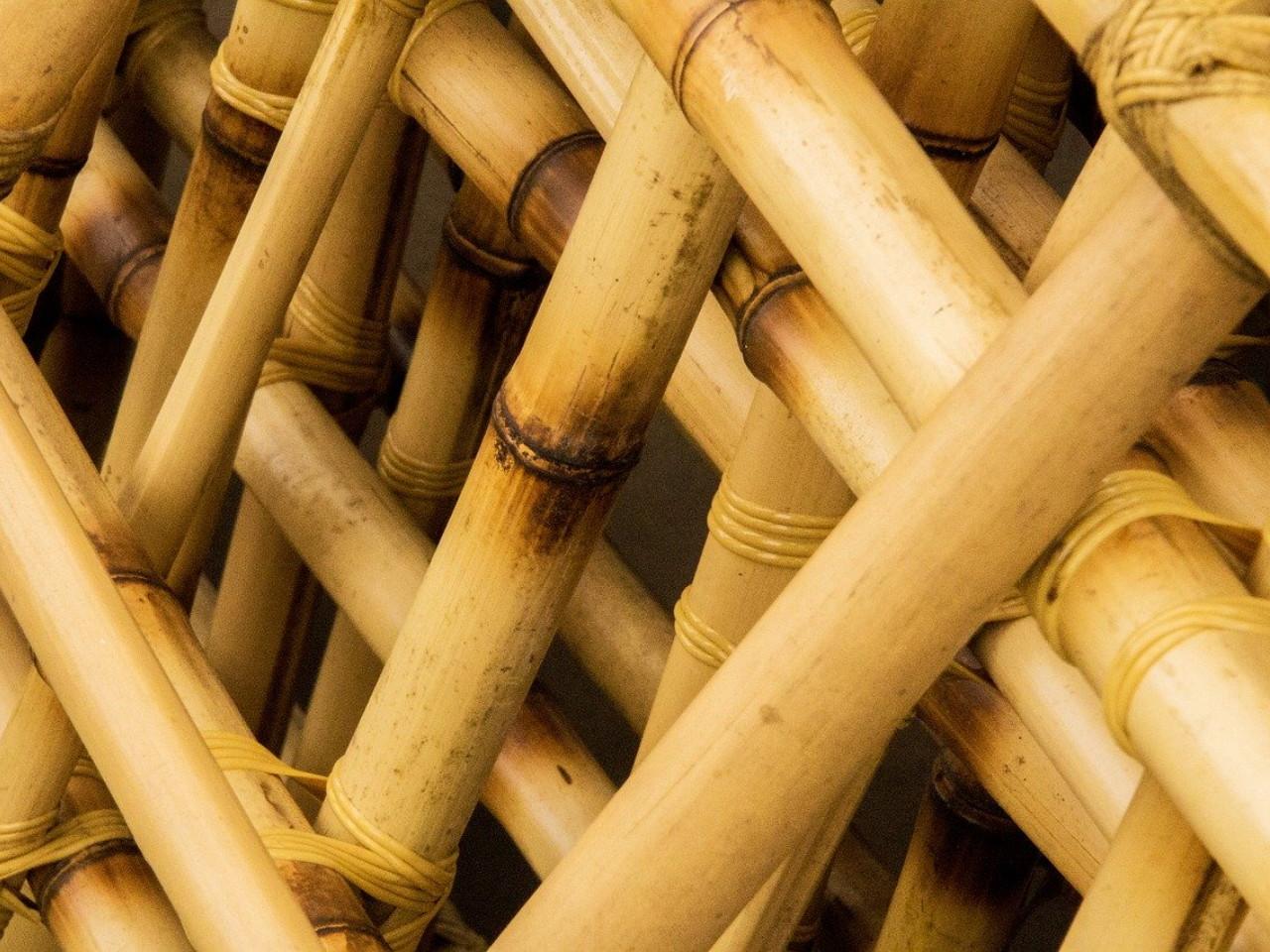 agar-bambu-lebih-kuat