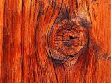 cara-mewarnai-kayu-alami