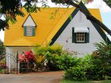 genteng-rumah-warna-kuning