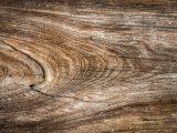kelebihan-kekurangan-semua-kayu