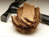 membuat-dinding-batok-kelapa