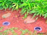 membuat-lubang-biopori