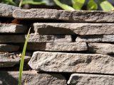 menempatkan-batu-alam