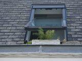 merawat-atap-beton