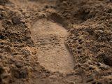 metode-pelaksanaan-urugan-tanah