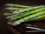 panduan-budidaya-asparagus