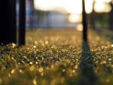 panduan-memasang-rumput-sintetis