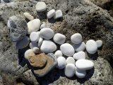 panduan-pemasangan-batu-koral