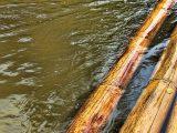 pengawetan-bambu-yang-lengkap