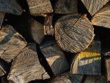 pengeringan-kayu-secara-buatan