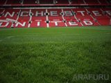 stadion-menggunakan-rumput-sintetis