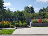 taman-rumah-minimalis