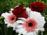 tips-memilih-bunga-potong